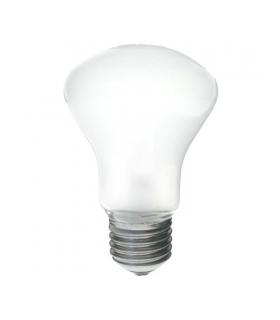 Elinchrom 23002 Modelling Lamp 100W D-Lite/BXRI