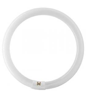 Bec lampa circulara fluorescenta de 65 W pentru FLC-65 65W