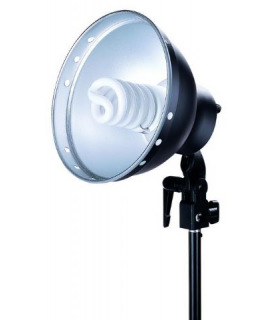 Lampa cu reflector 21cm Linkstar Daylight Lamp FLS-21N1 28W