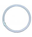 Bec lampa circulara fluorescenta 40W Falcon Eyes RFL-3